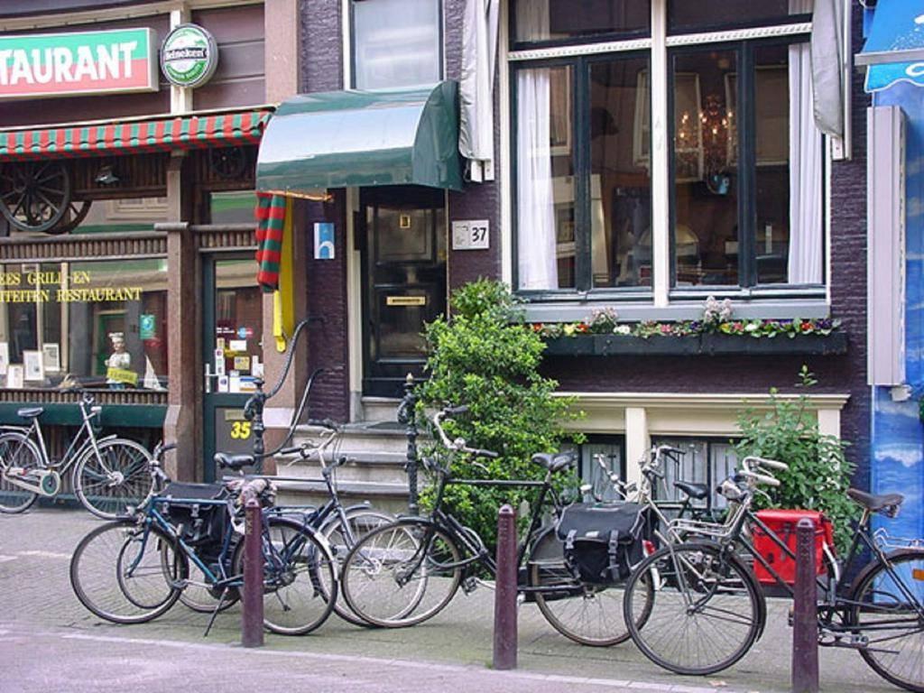 golden Gay bear amsterdam